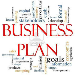 Business plan writing services india