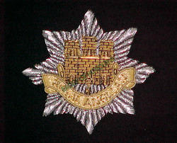 Royal Anglian Blazer Badges