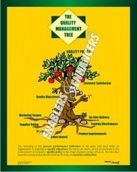 Quality Management Tree an Educational Chart