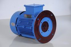 Vertical Hallow Shaft Motor