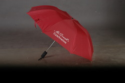 Customized Two Fold Automatic Open Umbrella