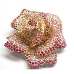 Diamond and Ruby Pendent and Broach