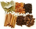 All Kinds Of Indian Herbs