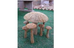 Mushroom Sat
