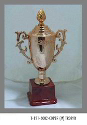 Awards Trophy Cup