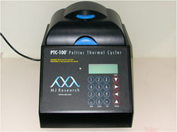 Conventional PCR ( MJ Research)