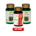 Ayurleaf Herbal Herbal Fitness Supplements, Pack Size: 60 Caps/bottle