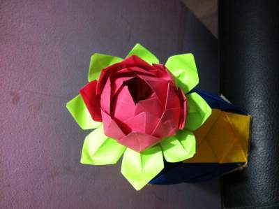 Paper Craft Flowers - How to Fold an Origami Lotus Blossom | 299x400