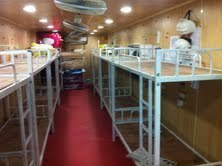 Bunk House Rental Services (bunk bed )