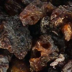 Oil Resin Plants