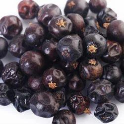 Juniper Berries View Specifications Details Of Juniper Berries