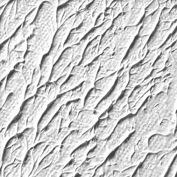Texture White Texture White Gesso Exporter From Belgaum