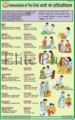 chart on immunization: Immunization chart at rs 180 piece s charts on aids elite