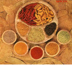 Indian Ground Spices
