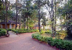 Wild Chalet Resort