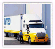 Packers Movers And Transport Services Noida And  Delhi