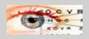 Low Vision Aids Services