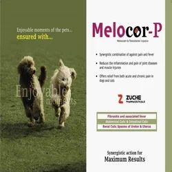 Veterinary Paracetamol Meloxicam Injection