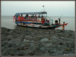 Sundarbans Jungle Safari