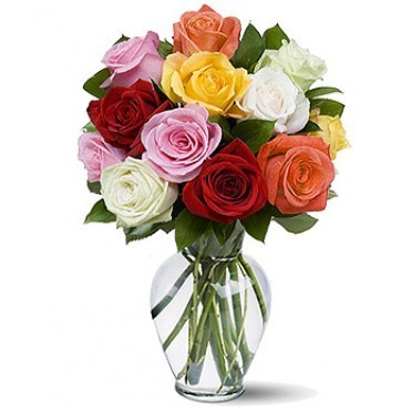 Cut Roses, Fresh Flowers, Plants & Trees | VNS Global India