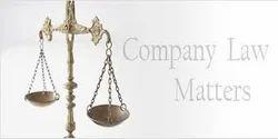 Company Law Matters