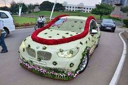 Wedding car decoration in mumbai wedding car decoration junglespirit Gallery