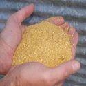 Corn Distillers Grain