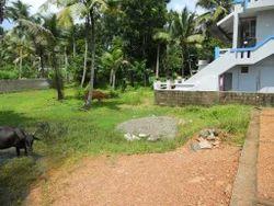 Land For Sale Udayamperoor