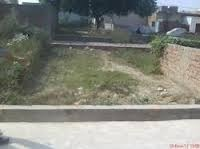 50 Gaj Plots in Satyam Pura, Najafgarh