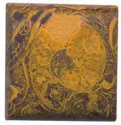 Marium Fossil Stone