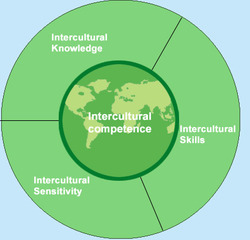 Developing Intercultural Competence