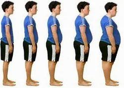 Weight Gain Program
