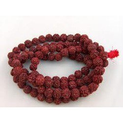 108 Beads Rudraksha Mala