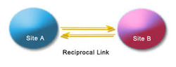 Reciprocal Link Building