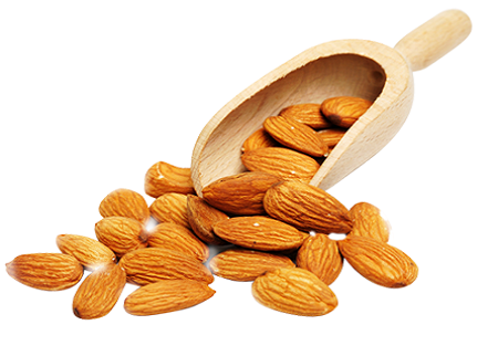 Almond Nuts, Packing Size: KG, Ghosh Agri Tech Private ...