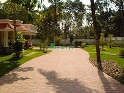Paved Pathways & Driveways