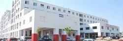 LN - Medical College