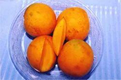 Panchavarnam Mango