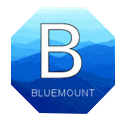 Bluemount Engineers