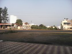 105acres Irrigated Land In Ahmednagar Maharashtra