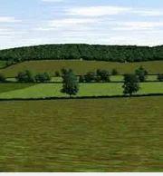 Agricultural Lands Property