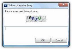 Captcha Entry Service