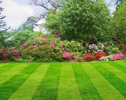 Garden Maintenance Services Lawn Development Services Retailer