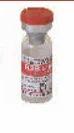Mukteshwar Strain (R2B) Veterinary Vaccines