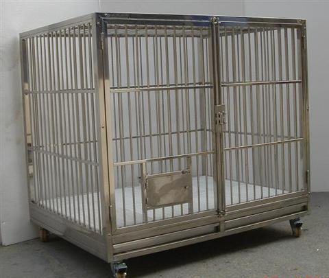 Animal Cage Dog Cage Manufacturer From Ahmedabad