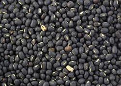 Black Moong Dal