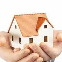 Industrial Real Estate Consultant
