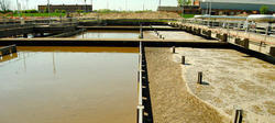 Bio Culture For Sewage Treatment Plant (STP)