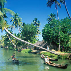 Kerala Backwater Delight Tour Package