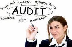 Statutory Audits Service